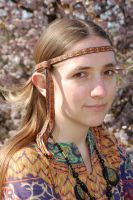 Hippie hairband 8 by were-were-wolfy