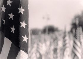 Old Glory by ilovejolie86