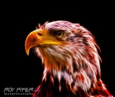 Bald Eagle: Fractalius Re-Edit by nerdboy69