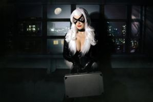 black cat by chrisfkn