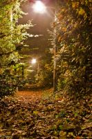 Autumn at night. by achilles852