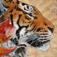 Detail of Tiger Lily by Kittenpants