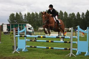 Show-jumping by Shamrocky