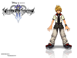 Kingdom Hearts 2 Wallpaper by RaigaSpiffy