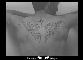 Kempers Wings by diamondwhitewolf