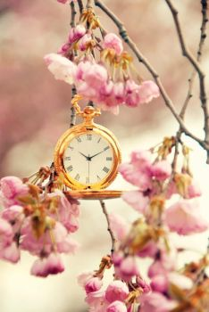 Time to Spring by stg123