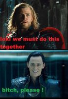 thor and loki by safire-the-Dragon