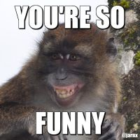Funny Monkey Meme by jarn