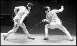 Fencing by LacrimaNera