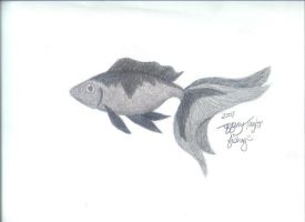 Graphite Fish by InkMunkY