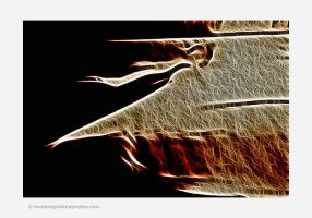 Shadows-1 by kootenayphotos