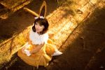 Sitting Eevee by MeganCoffey