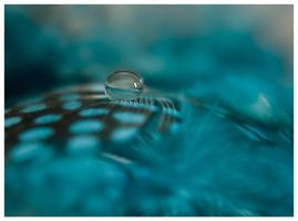 feather droplet 3 by mzkate