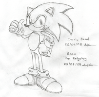 +Sonic - The Hedgehog+ by RecklessKaiser