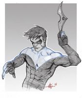 FDF Nightwing by Alex0wens