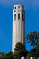 Coit Tower by cantsaynotohope