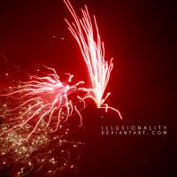 flying wild by illusionality