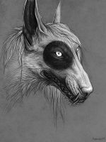 Grey. Sketch by Alai-Corvus-Aorax