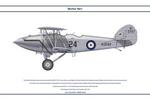 Hart GB 24 Sqn by WS-Clave