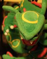 Rayquaza - Growl by Trixita