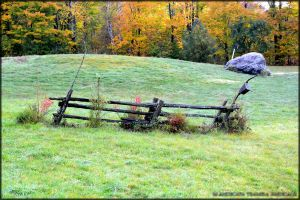 Fence by Tramira