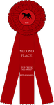 SECOND PLACE ribbon by noebelle