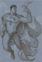 Superman Big Wow 2013 by TerryDodson