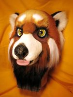 Red Panda Closeup by LilleahWest