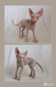 Commissioned Sphynx Cat Doll by LimitlessEndeavours