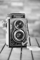 Old Flexaret by black-ladybird