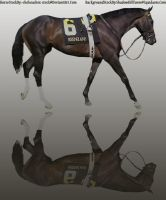 Bay Horse Race Graphic by kdaigler