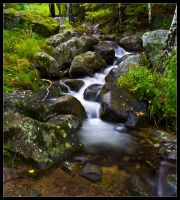 Down the stream by Morpher-inc