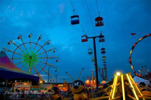 NC Mountain State Fair 6016 by TommyPropest-Candler