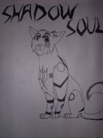 Shawdowsoul by eaglespirit1