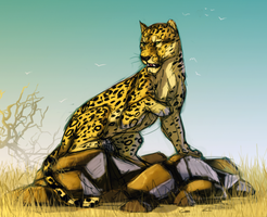 Leopard on the rocks by Masked-lion