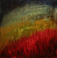 Field of Passion by peggymintun