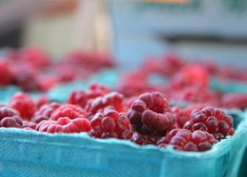Fresh Raspberries by VileYonderboy