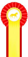 2nd place ribbon by SnoHeartsMay
