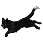 Ravenpaw AWC collab by Winggal