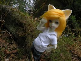 A walk though the forest 4 by stievel