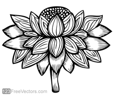 Vector Flower Image by 123freevectors