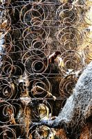 Bed Springs Sprung by basseca