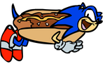 Nyan Sonic by TheSonicShow