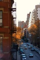Autumn In NYC Nov. 2010 by FranklyGraphicDesign