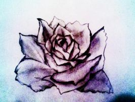 Purple Rose by Fragment-City