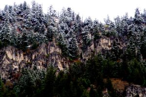 First Snow of the Season by greenwalled1
