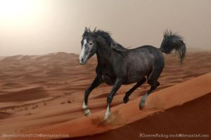 Mirage:Prize for RenegadeStray by PintabianDreamer1222