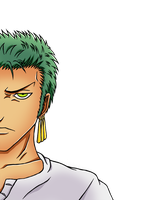 Roronoa Zoro by hedgehog3000