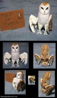 Common Barn Owl plush by Animus-Panthera
