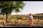 Child And Tree by emrepullukcu